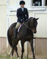 Horseback Riding Lessons | Synergy Equine